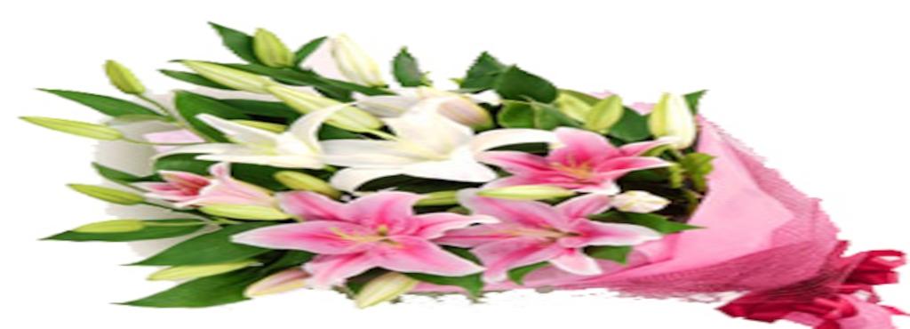 Sweet Surprise Florist, Bellandur - Florists Home Delivery in ...
