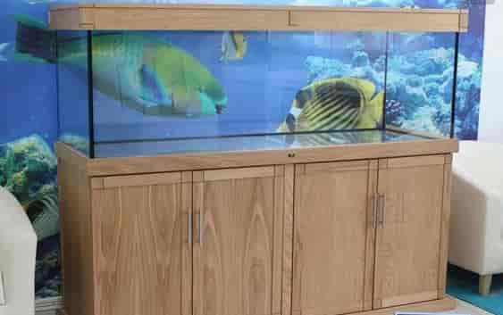 Fish Tank Cabinet Manufacturer Photos, Bommanahalli, Idukki  Pictures U0026  Images Gallery   Justdial