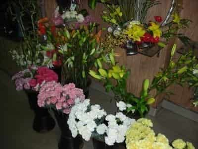 Ferns N Petals Karapm Chennai Florists Justdial