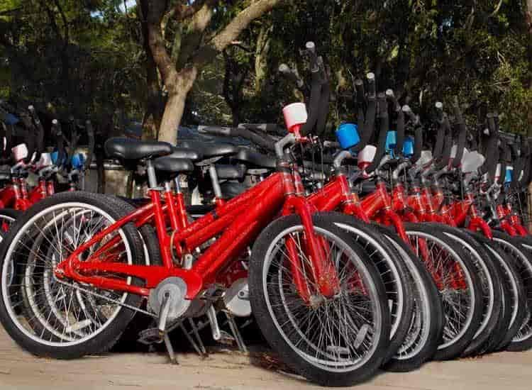 Merida Bikes Photos, Ghitorni, Delhi- Pictures & Images