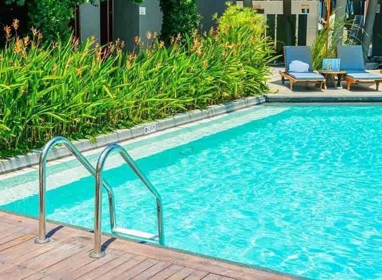 Cftri Swimming Pool, Krs Road - Swimming Pools in Mysore ...