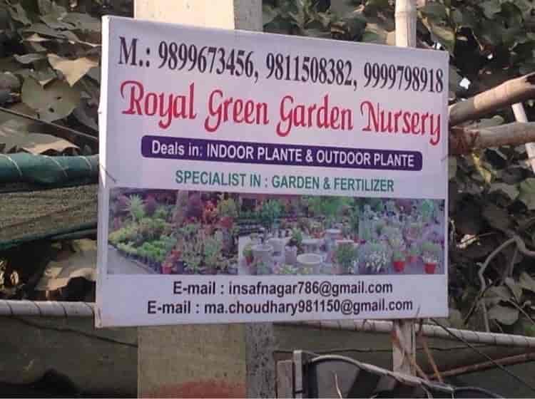 Royal Green Garden Nursery, Sector 52   Plant Nurseries In Delhi   Justdial