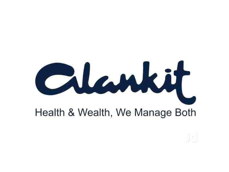 alankit assignments ltd