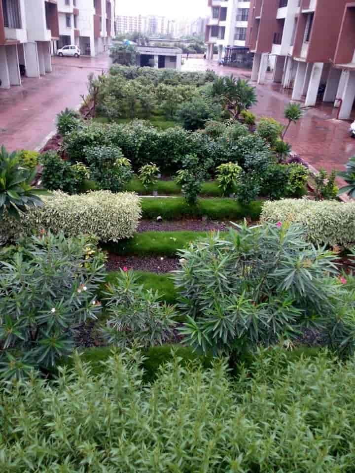 vision earthcare Photos, , Mumbai- Pictures & Images Gallery - Justdial