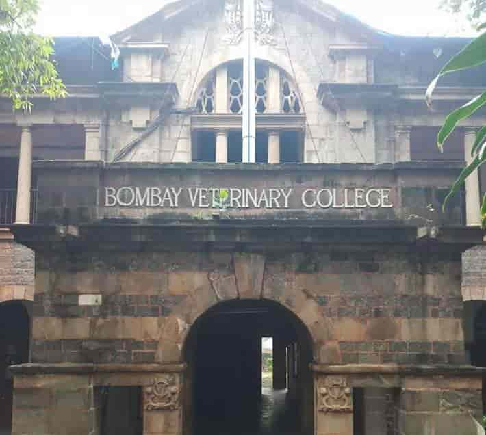 Top 5 Best Veterinary Hospitals In India